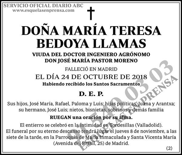 María Teresa Bedoya Llamas